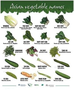 types of green vegetables * types vegetables . types of vegetables . root vegetables types of . types of vegetables chart . different types of vegetables . types of green vegetables . types of green leafy vegetables . types of asian vegetables Green Vegetables Name, List Of Vegetables, Chinese Vegetables, Fruits And Veggies, Chinese Herbs, Chinese Greens, Chinese Cabbage, Asian Cooking, Cooking Tips