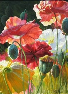 Poppy paradise. Watercolor Flowers, Watercolor Paintings, Watercolors, Botanical Art, Beautiful Paintings, Belle Photo, Painting Inspiration, Flower Art, Poppies