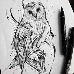 New Simple Bird Illustration Inspiration Ideas Owl Tattoo Drawings, Bird Drawings, Art Drawings Sketches, Tattoo Sketches, Animal Drawings, Tattoo Owl, Barn Owl Tattoos, Hedwig Tattoo, Drawing Animals