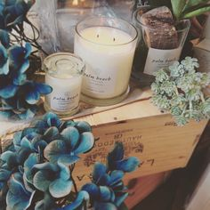 Palm Beach Collection kameyama candle house