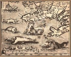 Vintage Print of a Map with Sea Monsters  8 x 10 by PacificPrints, $9.99