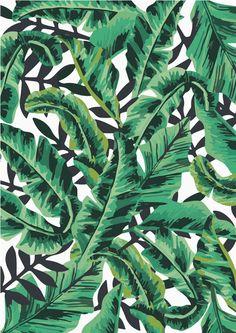 Tropical Glam Banana Leaf Print Art Print