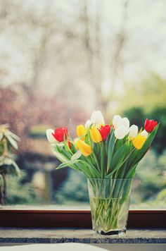 Mothers birthday tulips by Krambambuly on Flickr.