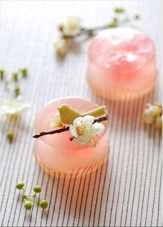 doublepudding Wagashi (和菓子) are traditional Japanese sweets Japanese Sweets, Japanese Dishes, Japanese Candy, Japanese Wagashi, Japanese Food Art, Japanese Rice, Cute Desserts, Dessert Recipes, Spring Desserts