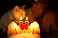 Miyoko Ihara has been taking photographs of her grandmother, Misao and her beloved cat Fukumaru since their relationship began in 2003. Their closeness has been captured through a series of lovely photographs. 11-16-12 / Miyoko Ihara