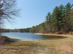 Pee in Walden Pond: How people are tainting Thoreau's treasure      Human activity around the pristine pond where Henry David Thoreau wrote his famous book is taking a toll. http://route.overnewser.com/newsciencewrld/?url=https://www.cnet.com/news/walden-pond-impacted-by-climate-change-urine-study-says/&utm_source=OverNewser&utm_medium=NewScienceWrld&utm_campaign=article