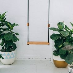 """Swing is made from recycled Australian hardwood. Natural timber oil finish or hand painted using only highest quality paint. Dimensions (approx): 23"""" wide x s"""