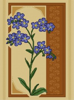 Forget-me-not (flower, plant)