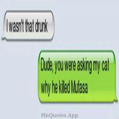 Drunk + cat