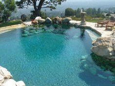 rock pond pool