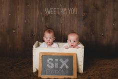 6 month twins   Sweet {little} You Photography