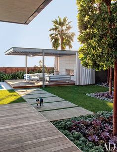 Tammie, the couple's Boston terrier, stands guard in the backyard; the pool cabana is outfitted with Gandiablasco furniture and curtains of a Sunbrella fabric.