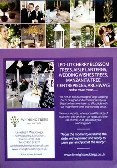 Exclusive wedding decor to hire for your wedding day with full delivery, set-up and collection always included in our prices Wedding Hire, Wedding Day, Manzanita Tree Centerpieces, Wishing Tree Wedding, Led Tree, Wedding Place Settings, Wedding Decorations, Table Decorations, Wedding Calligraphy