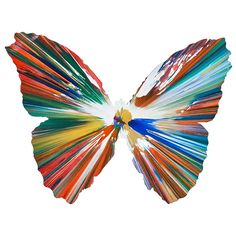Butterfly Spin Painting (Created at Damien Hirst Spin Workshop) 2009