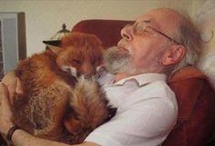 Хозяева, которые очень любят своих животных