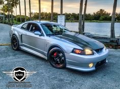 One of only eleven ROUSH Terminators built, this one hails from Miami, Florida. Check out this rare, and heavily modified ROUSH Cobra right here. 2001 Ford Mustang, Roush Mustang, Ford Svt, Ford Mustang Shelby, Ford Mustangs, New Edge Mustang, Blue Mustang, Mustang Cobra, Mustang Emblem