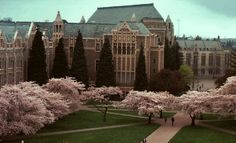 Nursing Programs in the U.S. for LPNs And RN Nursing Degrees (University Of Washington At Seattle Pictured)