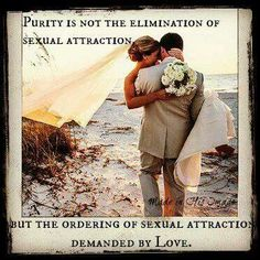 Sexual Attraction - Purity is not the elimination of sexual attraction, but the ordering of sexual attraction demanded by Love -Jason Evert Before Marriage, Marriage Advice, True Love Waits, Godly Relationship, Relationships, Relationship Building, Waiting For Love, Catholic Quotes, Catholic Dating