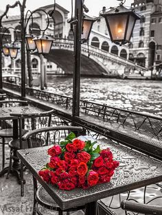 Red roses for a rainy day in Venice, Italy. It is still one of the most romantic places on earth rain or no rain. Oil Painting On Canvas, Diy Painting, Painting Abstract, Color Splash, Color Pop, Paint By Number Kits, Beltane, 5d Diamond Painting, Cross Paintings