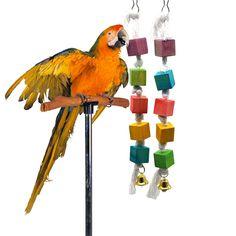 Traumdeutung Parrot Toys For Bird Accessories Supplies Cockatiel Perch Toy Budgie Parakeet Cage Decoration jouet perruche Parakeet Cage, Budgie Parakeet, Cockatiel, Budgies, Online Pet Supplies, Cat Supplies, Parrot Toys, Bird Toys, Small Birds