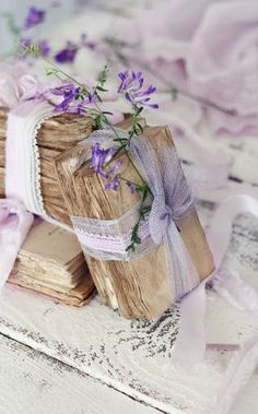 Vintage Books , Beautifully tied Ꮗ/Sheer Ribbon, Lace & Touch of Violets~❥