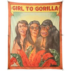 """Girl To Gorilla"" banner by Chicagoan Fred G. Johnson (1934). The Girl to Gorilla Illusion was one of the top-grossing grind shows on the carnival midway. Sadly, there are few working today. http://youtu.be/SNp18zApTY4"