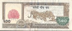 Nepalese Rupee   Banknote of 500 nepalese rupees - back