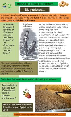 Ideas For Irish History Facts Families The Irish Potato Famine, Irish Famine, Irish Quotes, Irish Sayings, Irish Potatoes, Irish Culture, Irish American, Fact Families, Historia