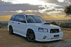 forester sweet