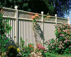 Cream fence with matching Latice