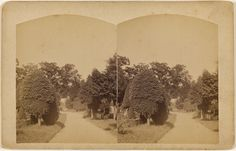 View of Laurel Grove Cemetery Port Jervis, N.Y.; W.H. Allerton; about 1865 - 1875; Albumen silver; 84.XC.979.869; Gift of Weston J. and Mary M. Naef