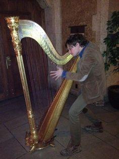Harpist?