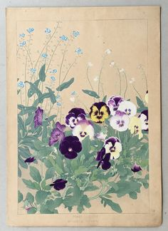 1931 Japanese antique woodblock print Chigusa by UkiyoeCosmosPlus