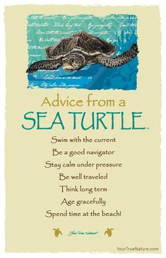 """""""Think long term."""" Advice from a Sea Turtle. Your True Nature Animal Spirit Guides, Spirit Animal, Advice Quotes, Life Quotes, Son Quotes, Advice Cards, Wisdom Quotes, Turtle Quotes, Turtle Swimming"""