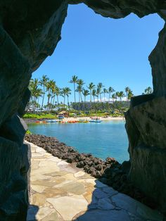 Spring away to warm Hawaii sunshine! ☀️