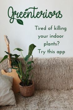Dowload the Greenteriors app for ideas and tips for indoor plant care and indoor plant maintenance. Say goodbye to your black thumb! We've made caring for plants simple and fun. Indoor Plants Low Light, Indoor Trees, Best Indoor Plants, Plant Images, Plant Pictures, Cat Friendly Plants, Low Maintenance Indoor Plants, Hanging Plants, Plant Care