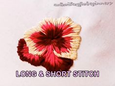 Long and Short Stitch - Hand embroidery stitches - You can find Stitches and more on our website.Long and Short Stitch - Hand embroidery stitches - Hand Embroidery Videos, Hand Embroidery Stitches, Crewel Embroidery, Hand Embroidery Designs, Embroidery Techniques, Ribbon Embroidery, Cross Stitch Embroidery, Embroidery Ideas, Hand Stitching