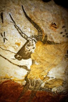 #Lascaux  --  Lascaux Cave Paintings  --  Shown: Cattle  --  Circa 15,000-10,000 BCE  --  Located near the village of Montignac in the Dordogne Region of France.