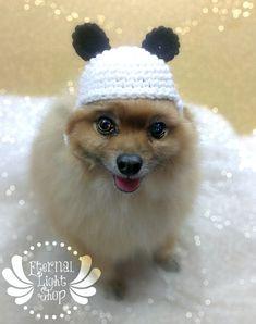 Pet Panda Bear Beanie XSXL by EternalLightShop on Etsy, $12.00