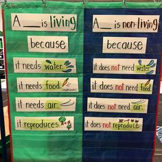 Interactive science word wall for our living/non-living unit. Swipe to see how k… - - Interactive science word wall for Kindergarten Anchor Charts, Kindergarten Science, Teaching Science, Science For Kids, Elementary Science Classroom, Teaching Ideas, Science Writing, Science Words, Science Lessons
