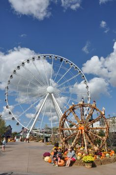 Go to the Island and ride the Wheel!