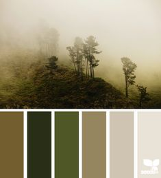 Misty Palette -- a soothing color scheme for when you want your nature tones to be subtle, yet all-encompassing. i can see this palette in a room. Scheme Color, Colour Pallette, Color Palate, Colour Schemes, Color Combos, Color Patterns, Green Palette, Room Colors, House Colors