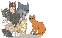 From top to bottom: Spottedleaf, Graystripe, Bluestar, Yellowfang, Whitestorm, Sandstorm, Lionheart, Fireheart, Cinderpelt, Cloudtail and Brightheart | by marius-p0ntmercy on tumblr