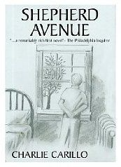 Shepherd Avenue by Charles Carillo: I really liked this book. The only reason I didn't gave it 5 stars, is because it has many grammar and editorial mistakes, but the story, oh the story is so good! I really felt like I knew all the characters. I pictured them perfectly and I even heard their voices. Plus, I was sad when it ended, and that is always a good sign. ☆☆☆☆¾