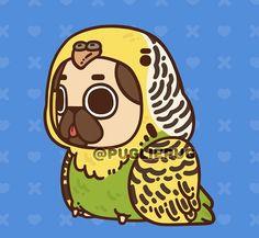 Pug Wallpaper, Kawaii Wallpaper, Cute Dog Drawing, Cute Drawings, Pugs In Costume, Pug Cartoon, Nyan Cat, Pug Art, Cute Doodles