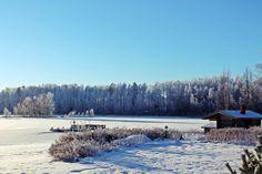 Kaunista, niin kaunista. Satulinna, Hirvensalmella kylpee tammikuun auringossa. Tammikuu 2015.