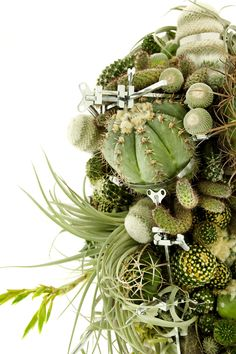 Azuma Makoto One day Exhibition 「Botanical Sculpture #3 lump」: BOTANICA(×) 東 信…