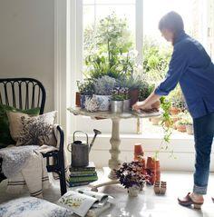 Vista de una colección de hierbas, flores y plantas de distintos tamaños encima de una mesa. Primer plano de un sillón STORSELE con artículos textiles y libros de jardinería.