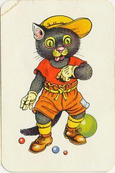 kat( zwartepiet) by janwillemsen, via Flickr