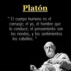 platon imagen 3 frases - Rebel Without Applause The Words, Cool Words, Magic Words, Lectures, Spanish Quotes, Life Motivation, Yoga, Life Lessons, Just In Case